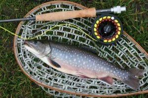orvis gear with fish